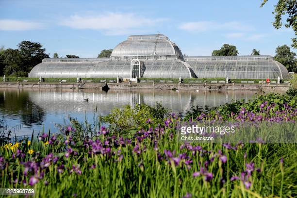 A general view of The Royal Botanic Gardens at Kew on May 20 2020 in Richmond England The gardens remain closed to the public due to the coronavirus...