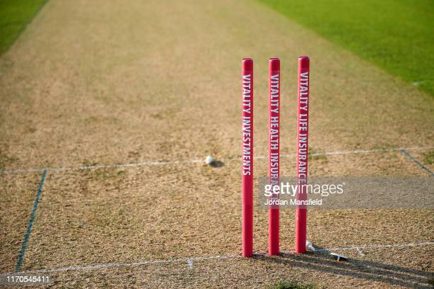 General view of the stumps ahead of the start of the Vitality T20 Blast match between Surrey and Somerset at The Kia Oval on August 27, 2019 in...