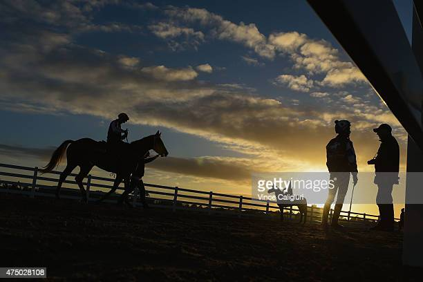 General view of the sunrise during a trackwork session at Flemington Racecourse on May 29 2015 in Melbourne Australia
