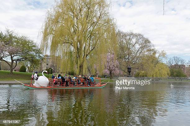 A general view of the Swan Boats in the Boston Public Garden on May 3 2014 in Boston