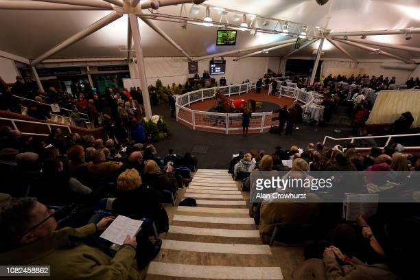 A general view of the Tattersalls sale held after racing at Cheltenham Racecourse on December 14 2018 in Cheltenham England