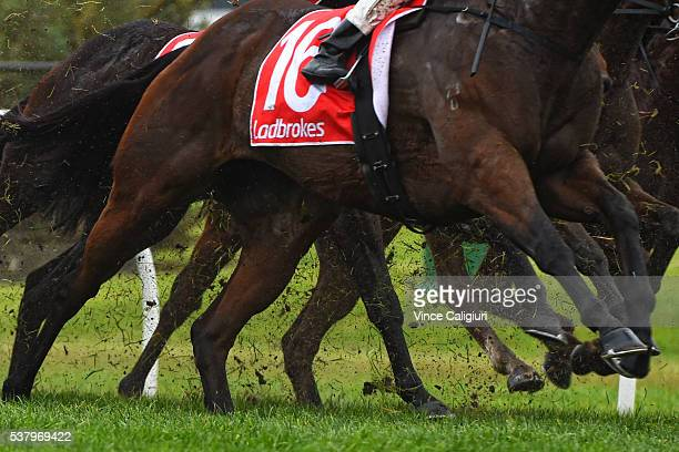 General view of the turf being kicked up in the heavy going in Race 5 during Melbourne racing at Sandown Lakeside on June 4 2016 in Melbourne...
