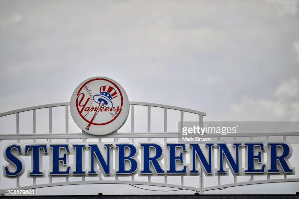 A general view of the Yankees logo at Steinbrenner Field before the spring training game between the New York Yankees and the Washington Nationals at...