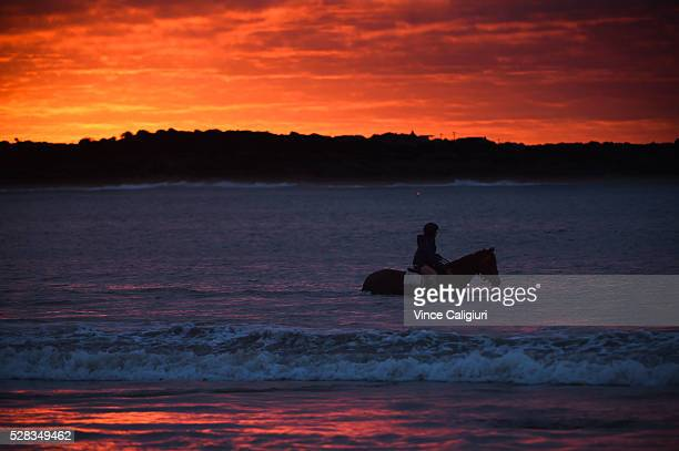 General view of trackwork session at Lady Bay beach ahead of day three of the Warrnambool Racing Carnival on May 05 2016 in Warrnambool Victoria...