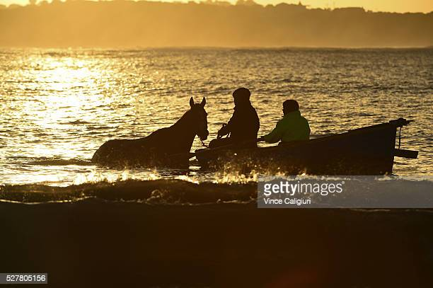 General view of trackwork session at Lady Bay beach as trainers take horses for a swim by boat ahead of day two of the Warrnambool Racing Carnival on...