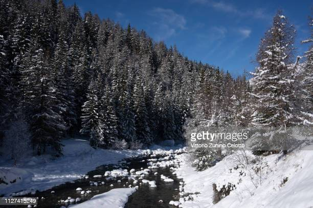 General view of trees and a river in the Gran Paradiso Park on February 04, 2019 in Cogne, Italy.
