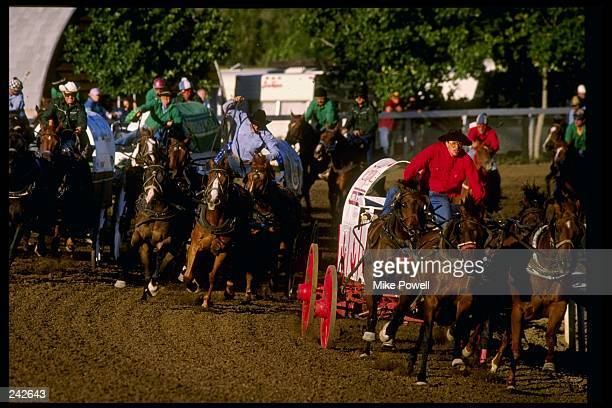 General view of wagon racing during the Calgary Stampede in Calgary Canada Mandatory Credit Mike Powell /Allsport