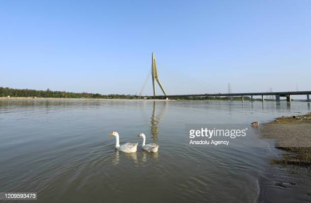 A general view of Yamuna river in New Delhi India on April 10 2020 According to news reports Yamuna river water has become clearer and the river...