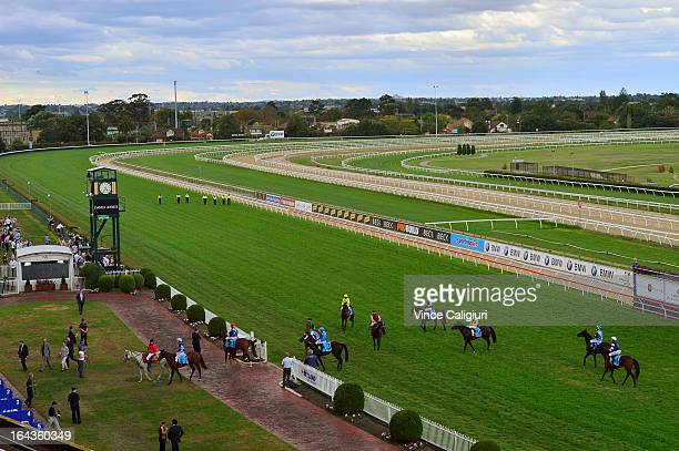 General view or track during Melbourne racing at Caulfield Racecourse on March 23 2013 in Melbourne Australia