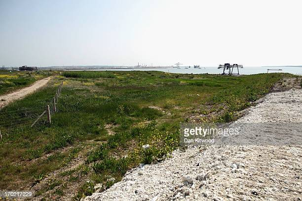 General view over the at 'Thurrock Thameside Nature Park' on June 6, 2013 in Thurrock, England. The 120 acres of grass, bramble and shrub that make...