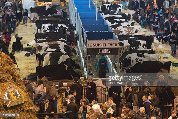 A general view shows cows and a placard with the inscription 'I am a breeder and I am dying' on the opening day of the 'Salon de l'Agriculture' in...