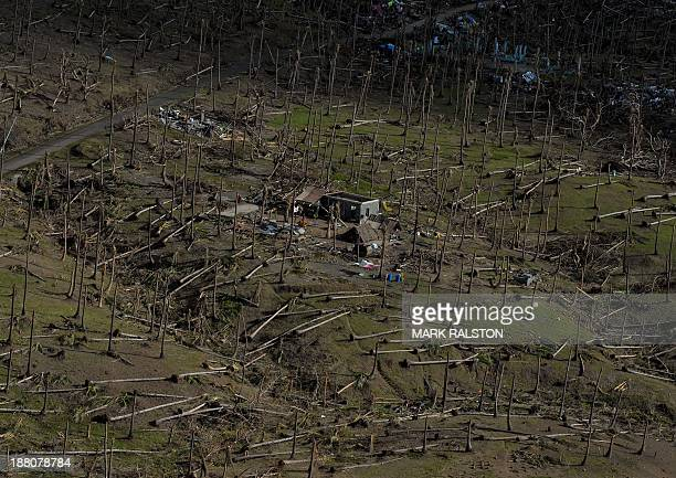General view shows damaged houses and flattened trees in the aftermath of Super Typhoon Haiyan in a village north of Tacloban on November 15, 2013....