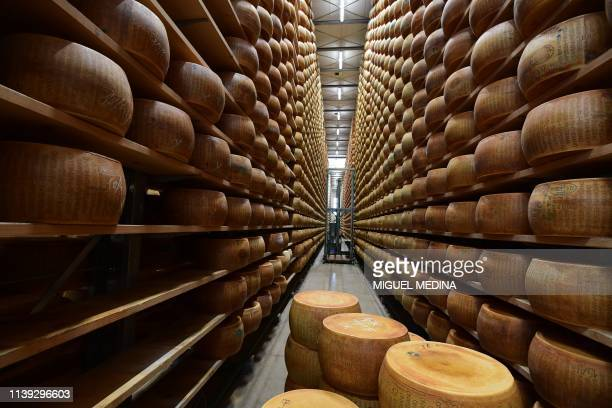 TOPSHOT A general view shows Parmesan cheeses stored at the Minelli dairy farm on April 5 2019 in Motteggiana Simone Minelli a cattle farmer whose...