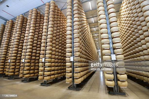 A general view shows Parmesan cheeses stored at the Minelli dairy farm on April 5 2019 in Motteggiana Simone Minelli a cattle farmer whose milk is...