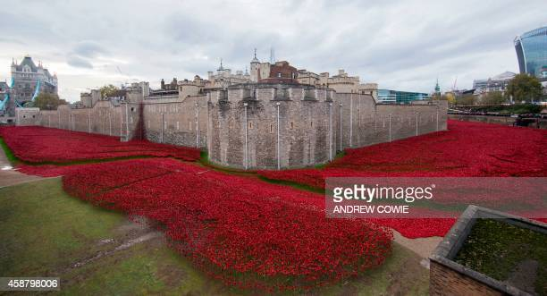 A general view shows the Blood Swept Lands and Seas of Red installation of ceramic poppies by artist Paul Cummins and theatre stage designer Tom...
