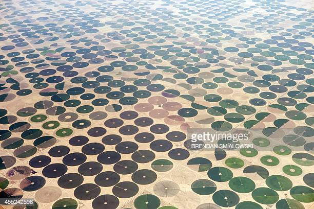 A general view taken from an airplane on September 11 2014 shows cultured farms in northern Saudi Arabia AFP PHOTO/BRENDAN SMIALOWSKI/POOL
