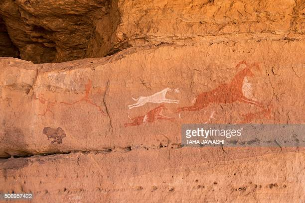 A general view taken on January 1 2016 shows prehistoric drawings illustrating a hunting scene on the wall of a cave in Wadi Tashwenat in Libya's...