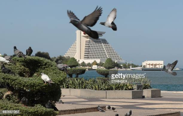 A general view taken on June 5 2017 shows pigeons flying above the corniche in Doha Arab nations including Saudi Arabia and Egypt cut ties with Qatar...