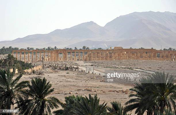 A general view taken on May 18 2015 shows the ancient Syrian city of Palmyra a day after Islamic State group jihadists fired rockets into the city...