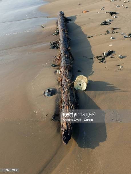 General Views Of Chatelaillon Beach Atlantic OceanPiece of wood stranded on the beach on December 27 2017 in Chatelaillon France