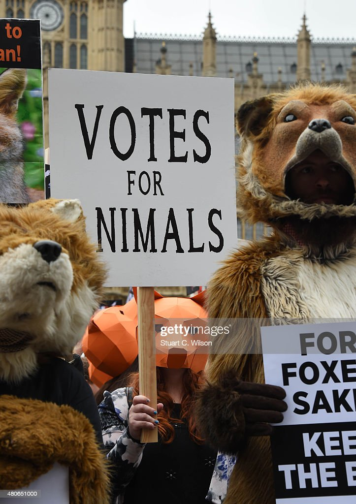 General views of demonstrators attending an anti-fox hunting rally for PETA on July 14, 2015 in London, England.