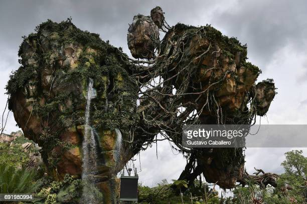 General views the Pandora The World Of Avatar Dedication at the Disney Animal Kingdom on May 23 2017 in Orlando Florida