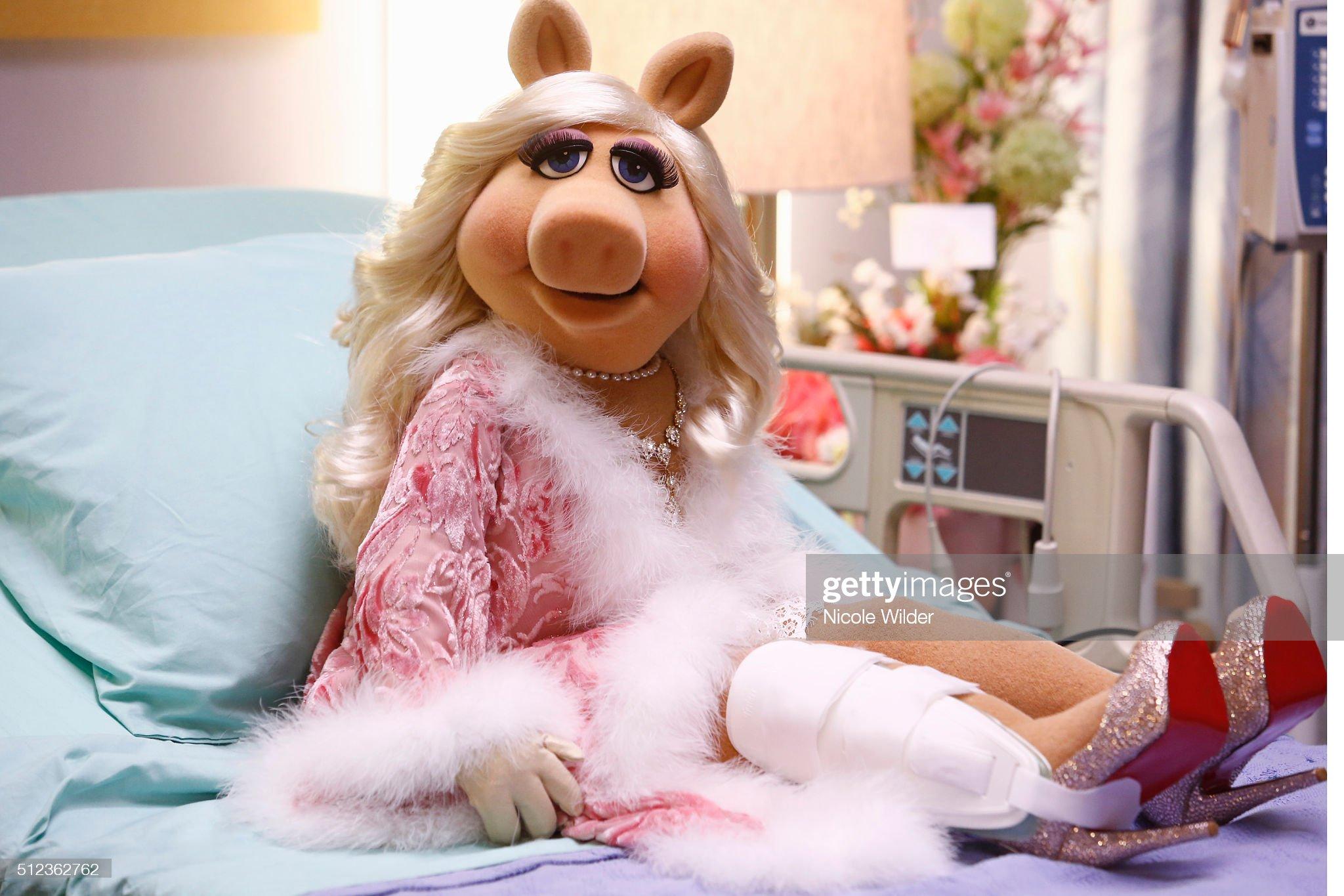 """The Muppets"" - Season One : News Photo"