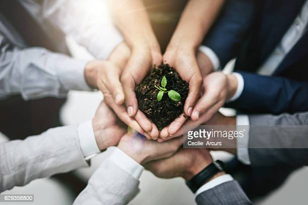 generating growth by joining forces - sustainability stock photos and pictures