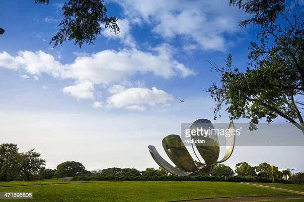 floralis generica - buenos aires stock pictures, royalty-free photos & images