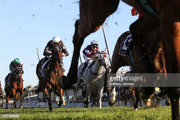 Generic horse racing pic during Sydney Racing at Rosehill Gardens on May 9 2015 in Sydney Australia