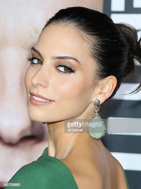 Genesis Rodriguez attends the 'Identity Thief' Premiere held at Mann Village Theatre on February 4, 2013 in Westwood, California.