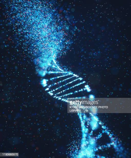 genetic disorder, conceptual illustration - cancer illness stock pictures, royalty-free photos & images