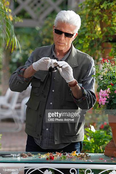"""Genetic Disorder"" DB Russell examines pieces of plants at Dr Robbins house on CSI CRIME SCENE INVESTIGATION on the CBS Television Network"