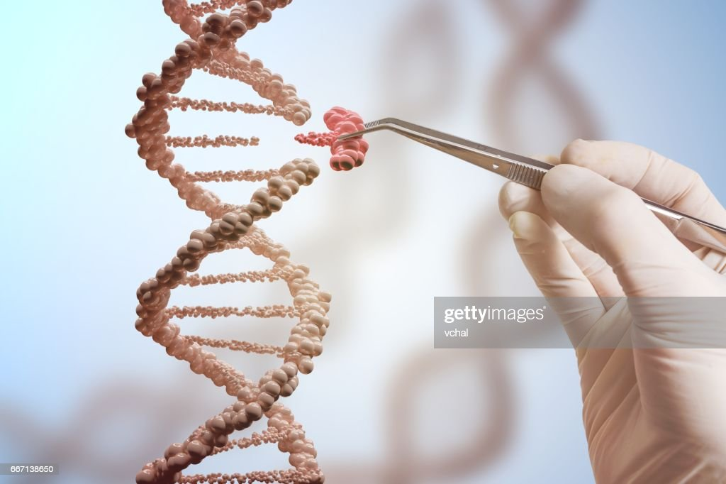 Genetic engineering and gene manipulation concept. Hand is replacing part of a DNA molecule. : Stock Photo