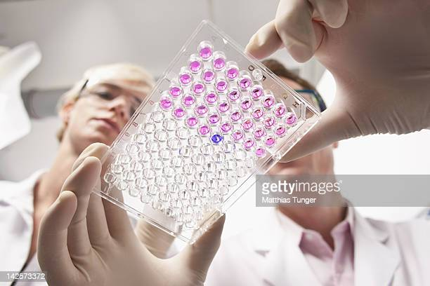 Genetic engineers holding a mocrotiter plate