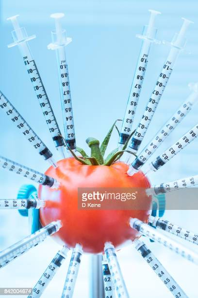 genetic modification - toxic substance stock pictures, royalty-free photos & images