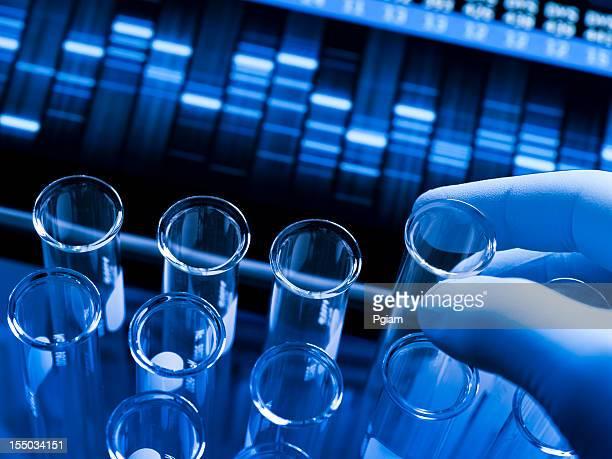 遺伝子研究の安全性