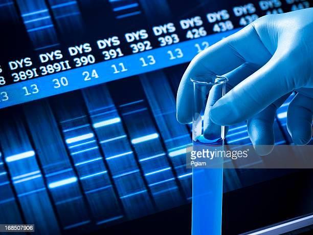 La investigación genética en el laboratorio.