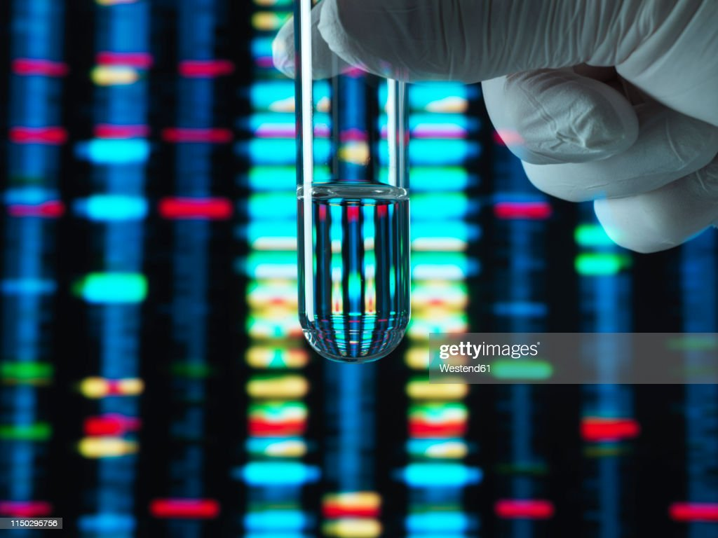 Genetic Research, DNA profile reflected in a test tube containing a sample : Stock Photo