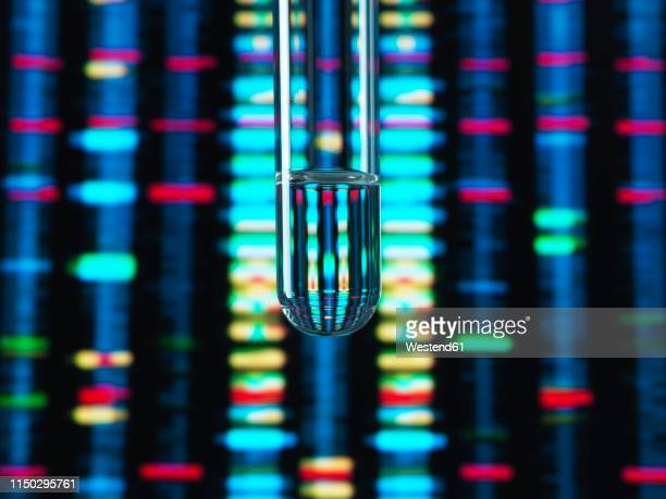 genetic research, dna profile reflected in a test tube containing a sample - science stock pictures, royalty-free photos & images