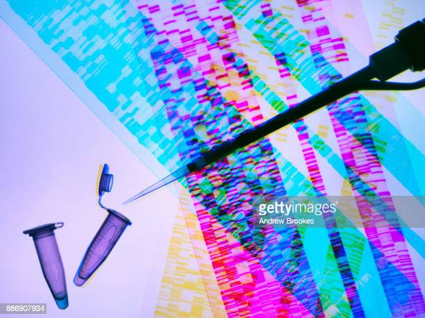 Genetic research, pipette and DNA samples on DNA autoradiogram illustrating research into life sciences and genetic modification