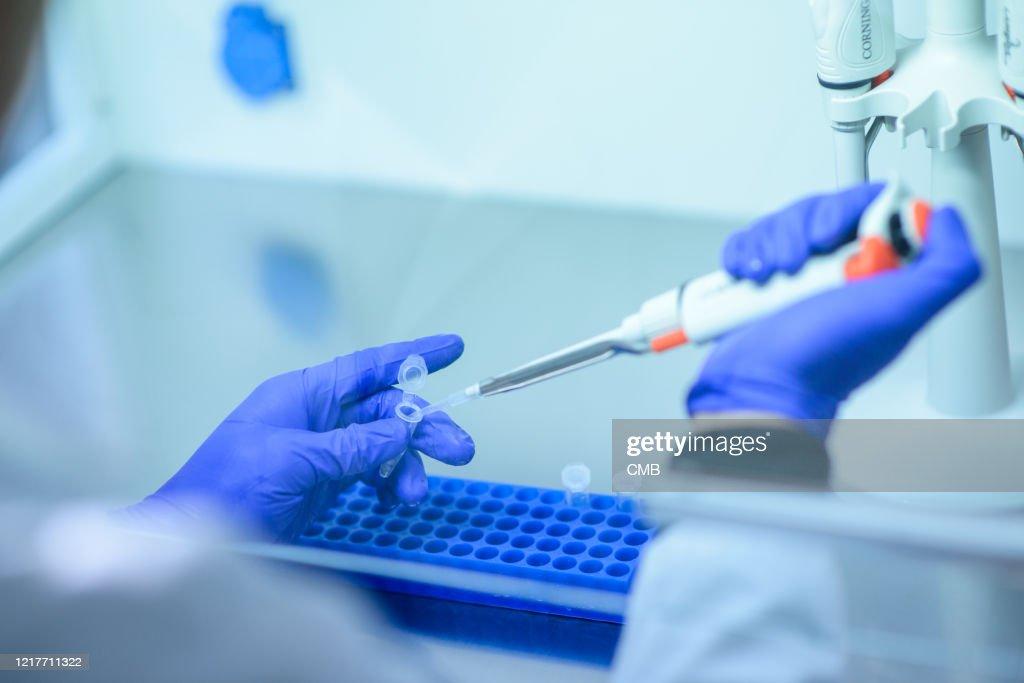 Genetic test : Stock Photo