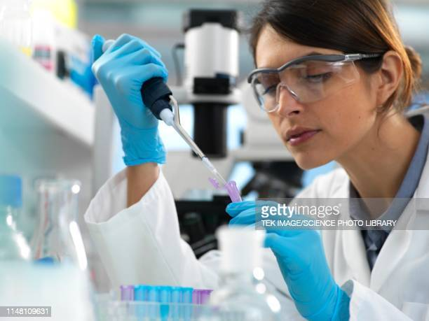 genetic testing - healthcare and medicine stock pictures, royalty-free photos & images