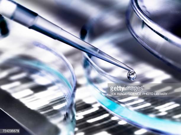 Genetics research