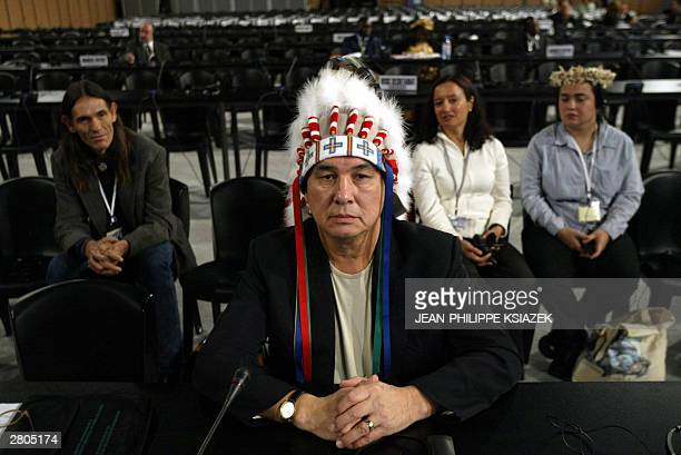 Delegates from the UN Permanent Forum on Indigenous Issues attend the fourth plenary session at the UN-sponsored World Summit on the Information...