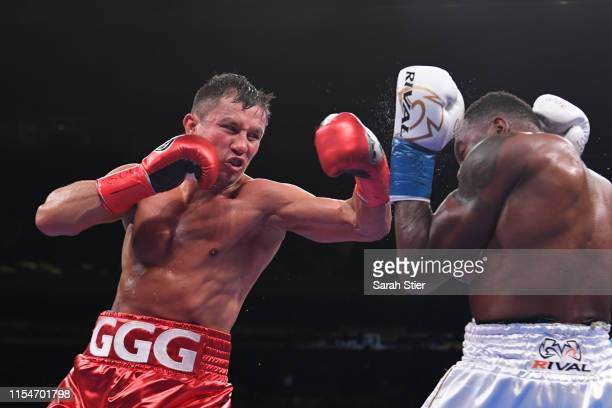 Gennady Golovkin of Kazakhstan trades punches with Steve Rolls of Canada during their Super Middleweights fight at Madison Square Garden on June 08,...