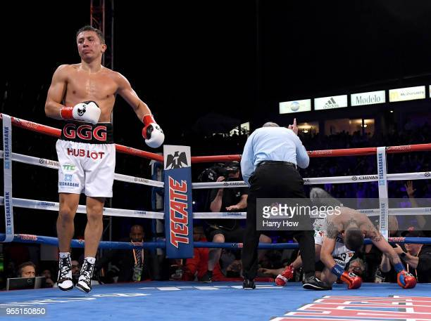 Gennady Golovkin reacts as Vanes Martirosyan is counted out in a second round knockout during the WBC-WBA Middleweight Championship at StubHub Center...