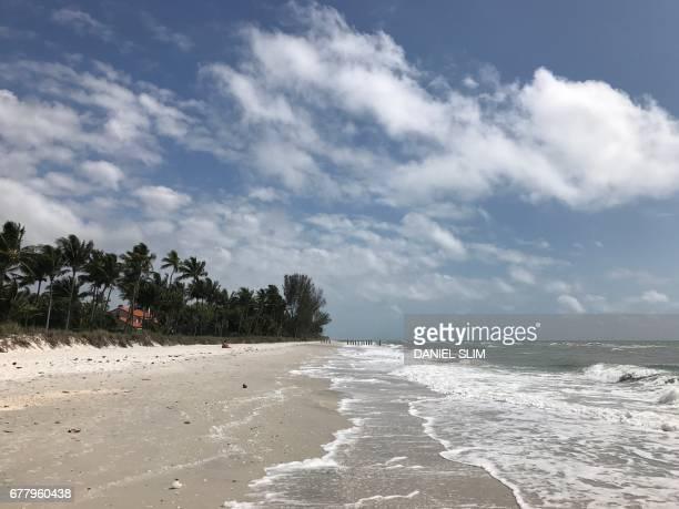 Genral view of Sanibel beach west of Florida on April 24 2017 / AFP PHOTO / Daniel SLIM