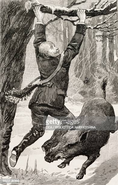 A gentleman attacked by a wild boar from the novel A bit of human nature by David Christie Murray engraving from a drawing by Percy Macquoid...