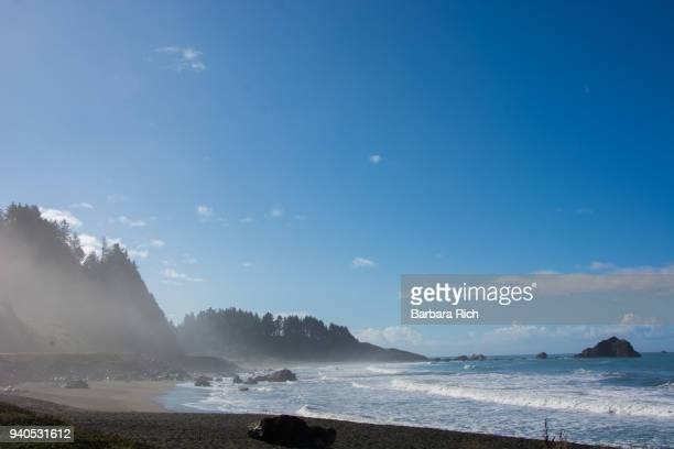 Gently breaking waves on the Pacific Ocean under a blue clouded sky with morning mist moving towards the redwood trees